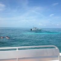 Photo taken at Sundiver Snorkeling by alexa P. on 7/29/2013