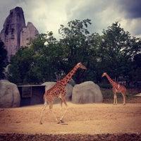 Foto tirada no(a) Parc zoologique de Paris por Amélie P. em 6/1/2014