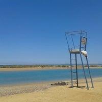 Photo taken at Sheraton Miramar Resort El Gouna by Ilse on 6/28/2013