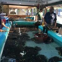 6/19/2017에 Chris M.님이 Ogunquit Lobster Pound Restaurant에서 찍은 사진