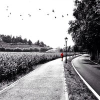 Photo taken at Cologne by Antonio C. on 7/20/2014
