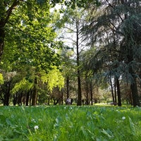 Photo taken at Parco Nord by Liane on 5/21/2017