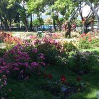 6/14/2013 tarihinde Csillaziyaretçi tarafından Szent István park'de çekilen fotoğraf