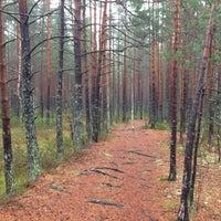 Photo taken at Äijänsuo by Markus L. on 11/3/2012