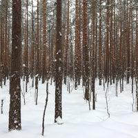 Photo taken at Äijänsuo by Markus L. on 12/23/2012