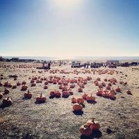 Photo taken at Bob's Pumpkin Patch by Natalie V. on 10/19/2014