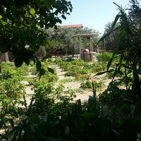 6/29/2014 tarihinde Ilke P.ziyaretçi tarafından Halabağı Kahvaltı Evi'de çekilen fotoğraf