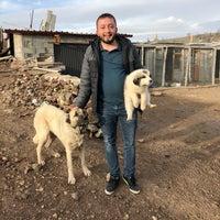 Photo taken at Dinçer Bahçeleri by Şevket Dinçer on 2/10/2018