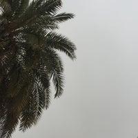 Photo taken at اشارة فحيحيل by 7soon a. on 2/15/2017