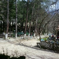 Photo taken at Altıntaş Restorant (Alabalık) by Sevcan S. on 2/24/2013