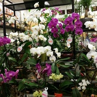 Photo taken at Cambie Flowers by Angela C. on 3/8/2014