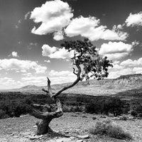 Photo taken at Capitol Reef National Park by John N. on 5/27/2013