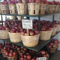 รูปภาพถ่ายที่ Golden Harvest Farms โดย Whitney C. เมื่อ 11/21/2012