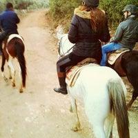11/10/2012 tarihinde Gzd K.ziyaretçi tarafından Laren Safari Park'de çekilen fotoğraf