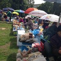 Das Foto wurde bei Thaiwiese im Preußenpark von Stephan S. am 8/11/2013 aufgenommen
