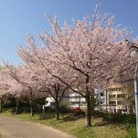 Photo taken at Ogimachi Park by Shinya K. on 4/8/2013