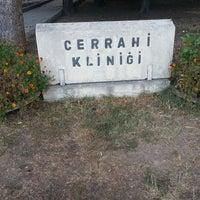 9/25/2013 tarihinde Çağrı Ö.ziyaretçi tarafından Ankara Üniversitesi Veteriner Fakültesi Cerrahi Anabilim Dalı'de çekilen fotoğraf