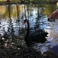 Photo taken at Parque de Ferrera by Tam on 12/8/2012