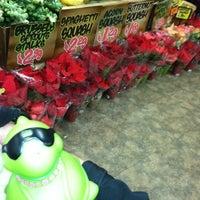Photo taken at Trader Joe's by TINA T. on 11/21/2012