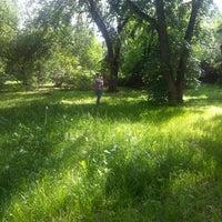 Снимок сделан в Дендрологический парк пользователем Yulia S. 6/13/2013