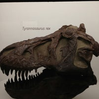 Photo taken at Peabody Museum of Natural History by Brian M. on 12/27/2012