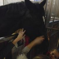 Photo taken at Horses Of Anastasia by Денис С. on 2/15/2014