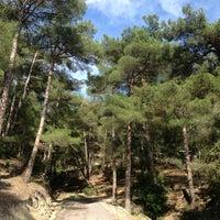 Photo taken at Kestirme by Nihat Y. on 6/11/2014