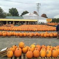 รูปภาพถ่ายที่ Golden Harvest Farms โดย Ben T. เมื่อ 9/27/2013