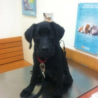 Photo taken at Banfield Pet Hospital by Laura on 12/3/2012