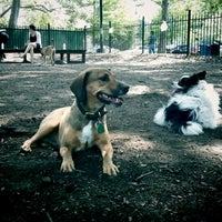 Photo taken at McCarren Dog Park by Ned R. on 6/10/2012