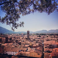 Photo taken at Torre Guinigi by Laura B. on 8/6/2013