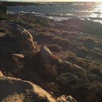 Photo taken at Parco Nazionale dell'Asinara by Asinara Catamaran on 8/23/2016