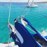 Photo taken at Parco Nazionale dell'Asinara by Asinara Catamaran on 2/9/2017