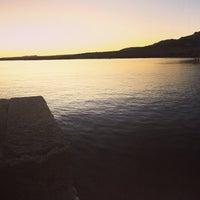 Photo taken at Parco Nazionale dell'Asinara by Asinara Catamaran on 8/22/2016