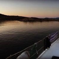Photo taken at Parco Nazionale dell'Asinara by Asinara Catamaran on 7/30/2016