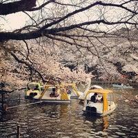 Foto scattata a Inokashira Park da d_sardine il 3/24/2013