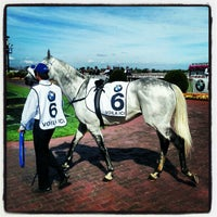 Photo taken at Caulfield Racecourse by Andrew H. on 10/20/2012