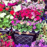 Photo taken at Tucker Square Greenmarket by Ksenia on 5/4/2013