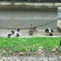 Photo taken at Parco Boio by Ilari C. on 11/30/2012