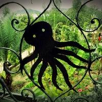 4/17/2013 tarihinde emraholgunziyaretçi tarafından Octopus Restaurant'de çekilen fotoğraf