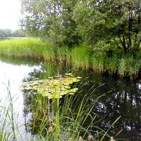 Photo taken at Britzer Garten by Dieter Muhr on 6/24/2013