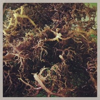 Photo taken at Seaweed Chemistry Building by Dave Eldon O. on 7/17/2013