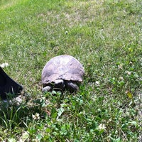 7/23/2013 tarihinde SEMİH Y.ziyaretçi tarafından Botanik Parkı'de çekilen fotoğraf