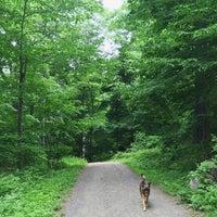 Photo taken at Rockefeller State Park Preserve by JW H. on 5/31/2015