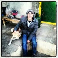 Photo taken at Vafa Animal Shelter   پناهگاه حیوانات وفا by Mostafa R. on 1/11/2013