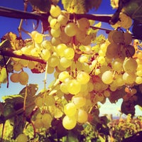 Photo taken at Chateau Chantal Winery Inn by Eric F. on 10/8/2013