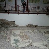 1/29/2013 tarihinde Elif A.ziyaretçi tarafından Büyük Saray Mozaikleri Müzesi'de çekilen fotoğraf