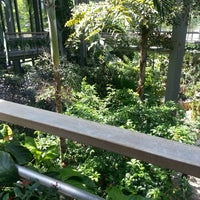 Photo taken at Texas Discovery Gardens by Real Posh M. on 5/14/2013