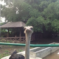 Photo taken at The Animal Farm by Sabrina S. on 8/3/2013