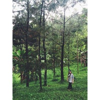 Photo taken at Bukit Trawas by Livh 올. on 5/1/2015